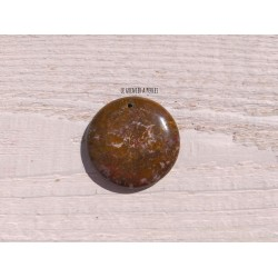 Pendentif en  Jaspe * 40 x 8 mm