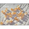Perles Abacus 3 mm Jade Doré X 50