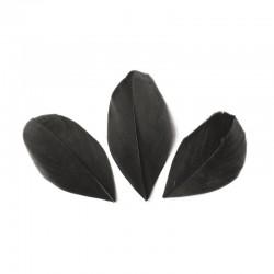Plumes 6 cm * Noir * Sachet de 3 grammes +/- 50 plumes