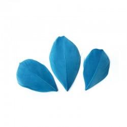 Plumes 6 cm * Bleu Turquoise * Sachet de 3 grammes +/- 50 plumes