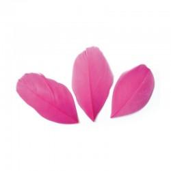 Plumes 6 cm * Rose Fuchsia * Sachet de 3 grammes +/- 50 plumes