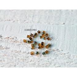 Perles CUBES 2 mm Olivine / Ambre x 25