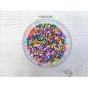 Décorations en polymère * Sprinkles Multicolore X 5 grammes
