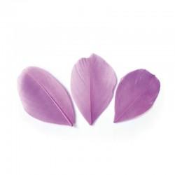 Plumes 6 cm * Mauve * Sachet de 3 grammes +/- 50 plumes