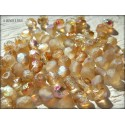 Facettes 4 mm ETCHED CRYSTAL BROWN RAINBOW ( 98582R )