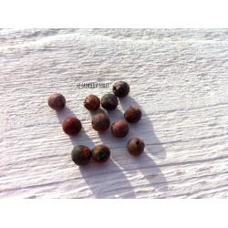 Perles Jaspe Léopard 6 mm X 10